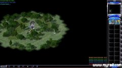 尤里的复仇对战地图森林狙击手